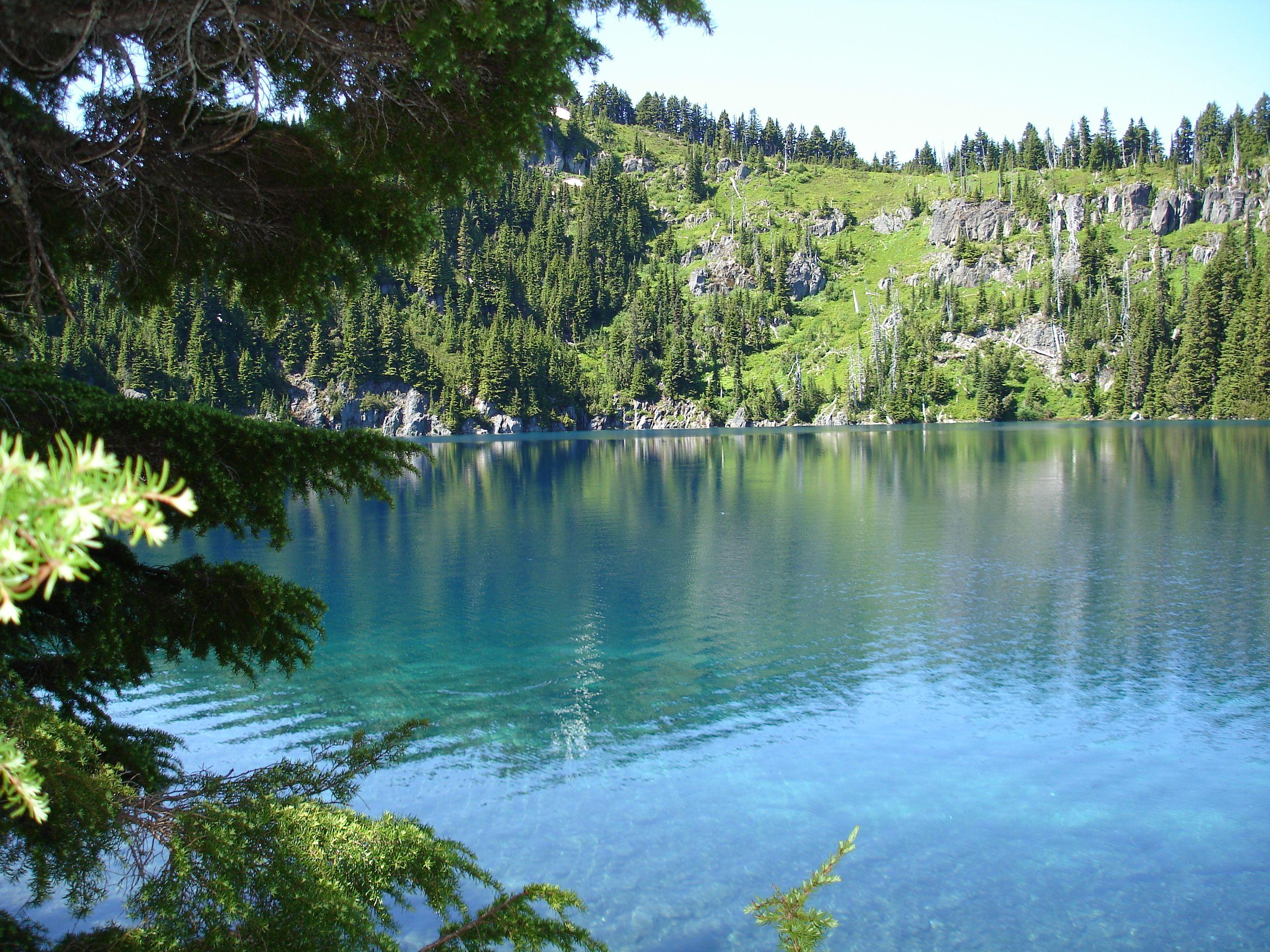 Long Park Wa Lacey Lake