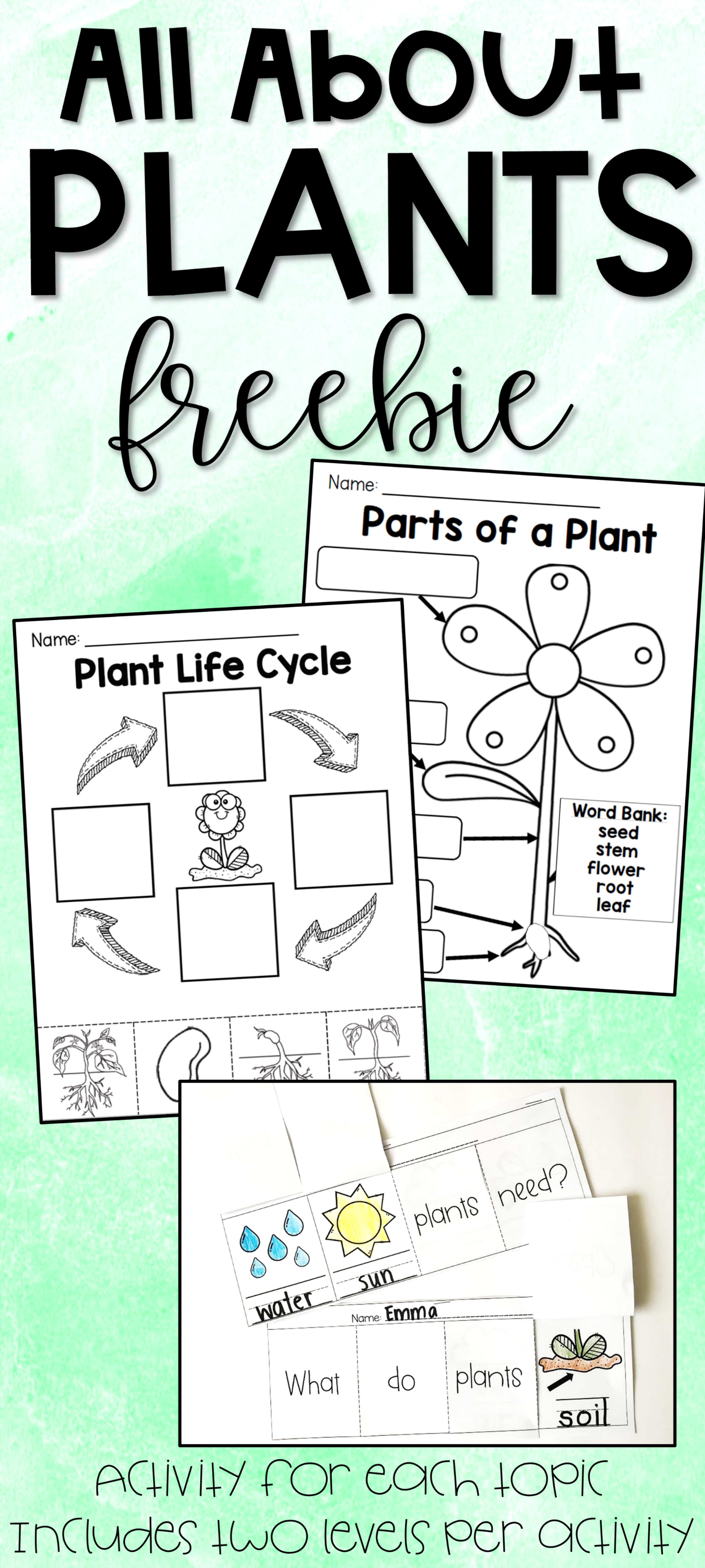 All About Plants Freebie Parts Of A Plant Plant Life Cycle What Plants Need Plant Life Cycle Plants Kindergarten Parts Of A Plant [ 5557 x 2500 Pixel ]