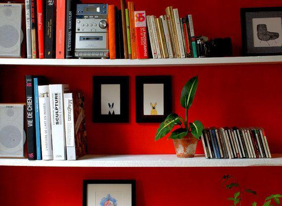 Bibliothèque rouge, plantes et aquarelles Samarcande.