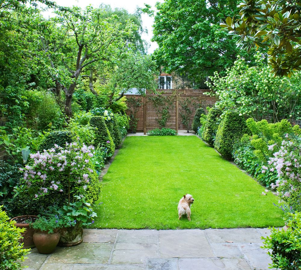 Ravenscourt Park | Townhouse garden, Small yard ... on Long Narrow Yard Landscape Design Ideas id=71544