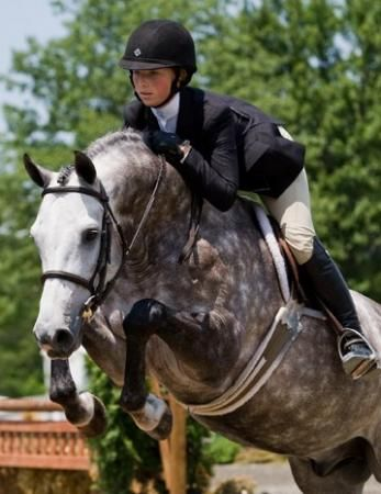 Hunter Derby | Horse, Gray and Hunter jumper