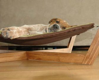 Awesome Decor Friendly Pet Accessories