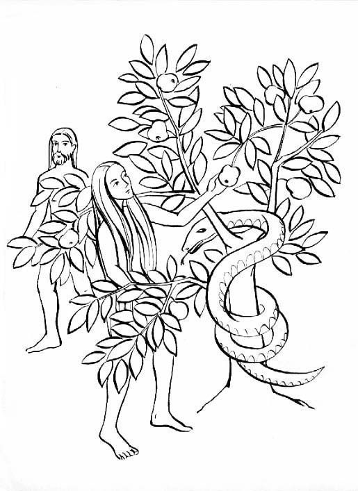 Adam And Eve Original Sin Catholic Coloring Page Ccd Adam Et