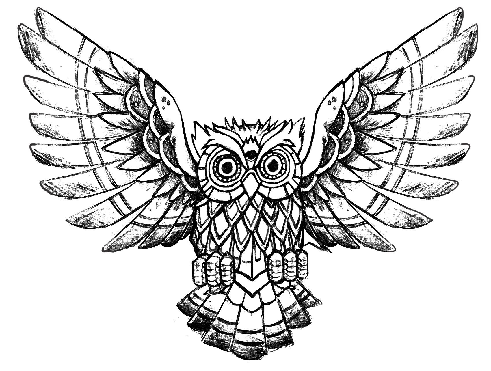 - Owl Raw Drawing - Owls Coloring Pages For Adults - Just Color