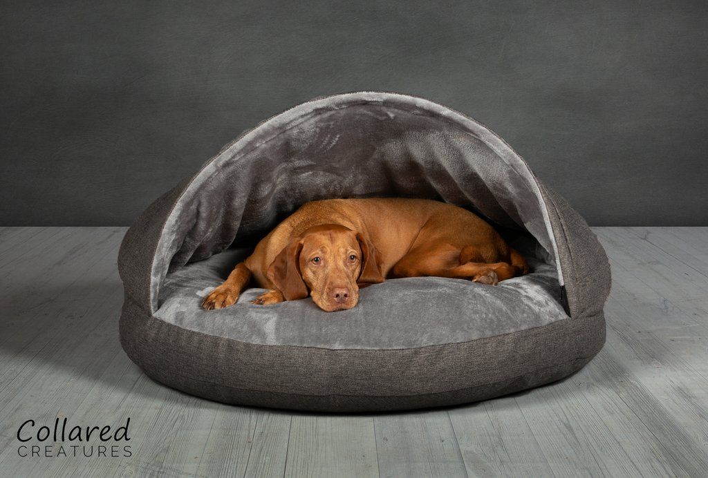 Grey Classic Cave Bed (With images) Luxury dog, Dog cave
