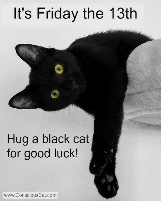 Resultado de imagen de friday 13 black cat