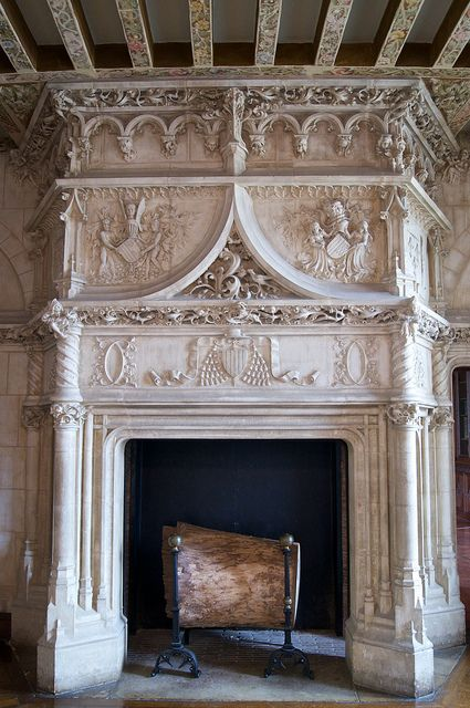 Gothic Revival Fireplace Home Fireplace Fireplace