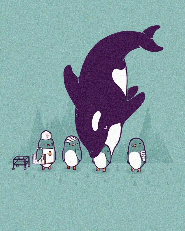 Oh...MEDIC!!! I need killer whale removal stat!