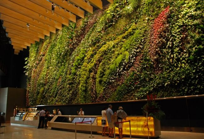 CapitaLand Büro in Singapur | Vertical Garden | Pinterest ...