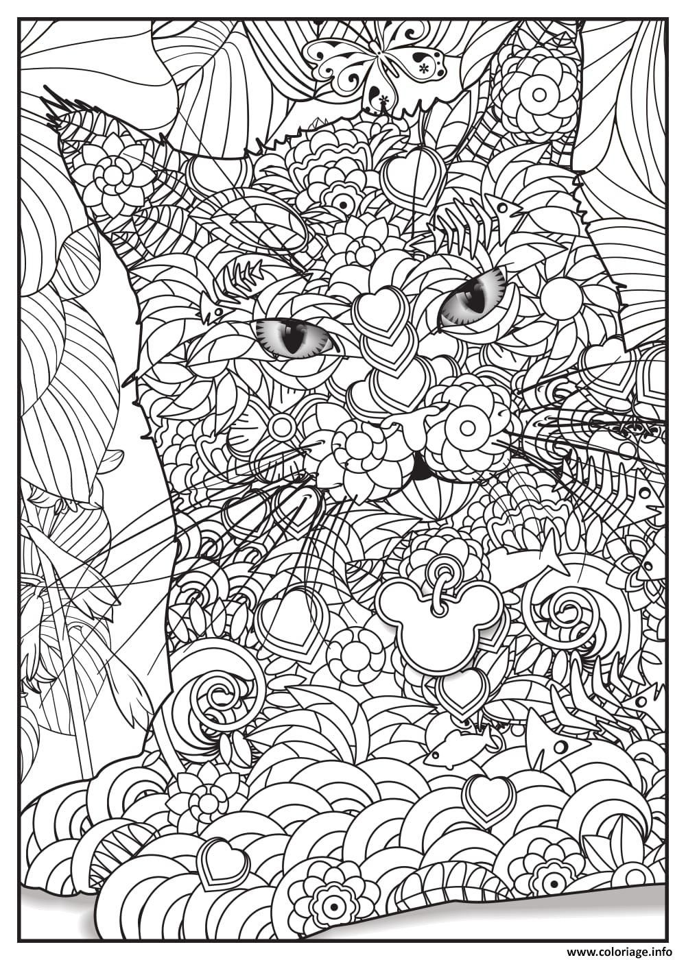 Coloriage Chat Maine Coon.Coloriage Chat Maine Coon Adulte Animaux Dessin A Imprimer