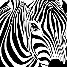 Billedresultat for sort hvid tegninger