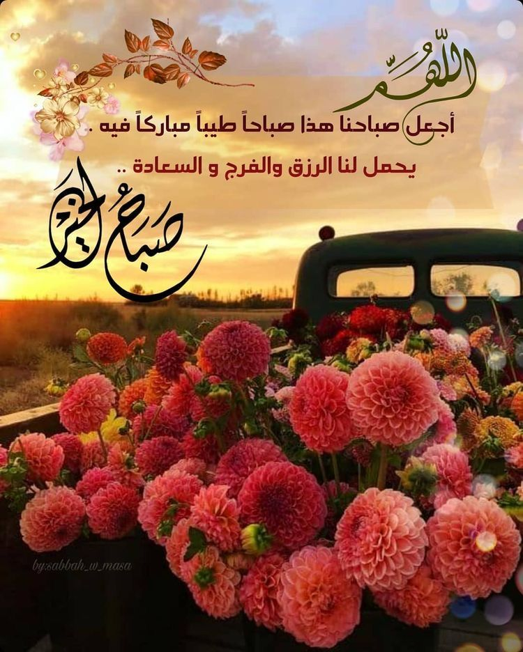 صباح الخير Good Morning Flowers Beautiful Morning Messages Good Morning Images