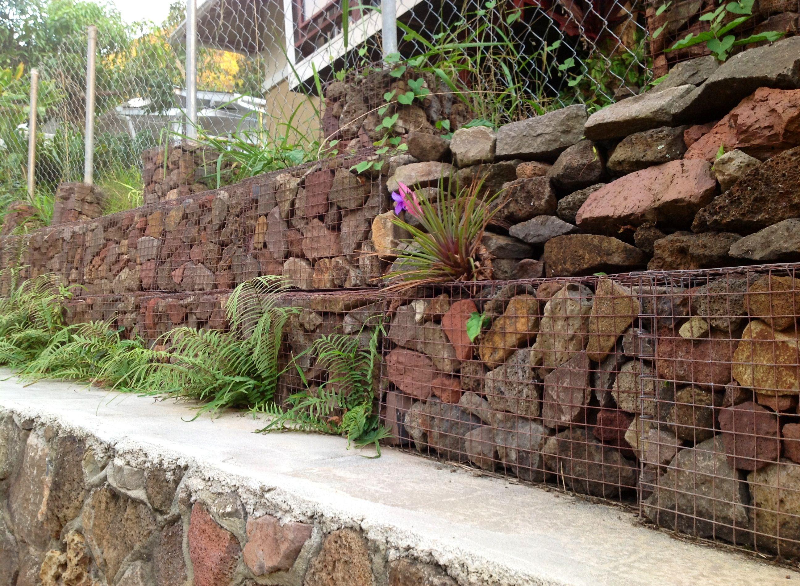 gabion retaining wall & fence