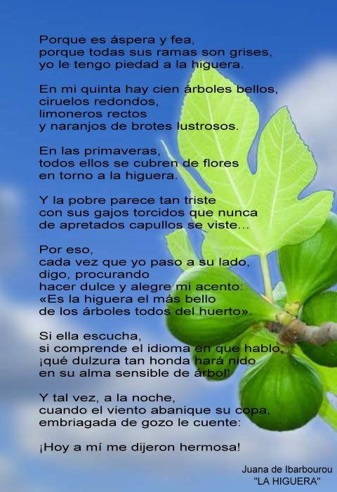EL BOSQUE DE OMBUÉS: JUANA DE AMÉRICA | frases | Pinterest | Bosques ...