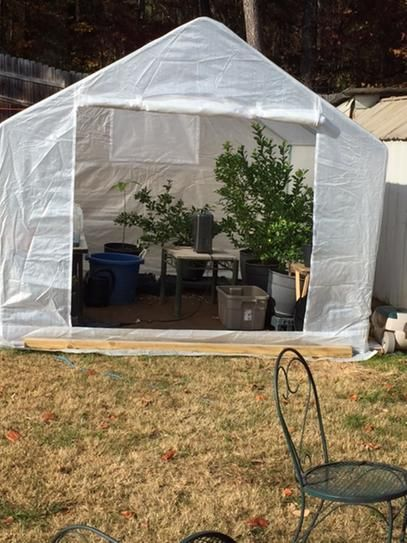 King Canopy 10 ft. W x 10 ft. D Greenhouse & King Canopy 10 ft. W x 10 ft. D Greenhouse | Canopy and Gardens
