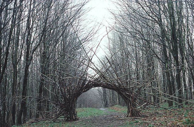 ndy Goldsworthy uses natural objects in his work, but also has his sculptures situated in public areas. Goldsworthy is a sculptor and photographer producing site-specific sculpture and land art situated in natural environments. I like how this artist keeps his work in the natural environment, such as the 'Woven Branch Arch' is situated in the woods, and how you can see the landscape around it.