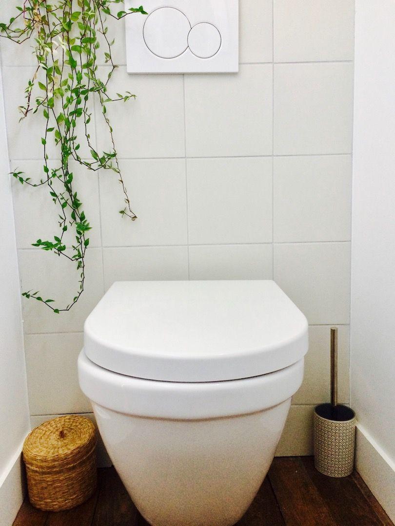 R novation toilettes wc suspendus parquet plantes - Idee renovation toilettes ...