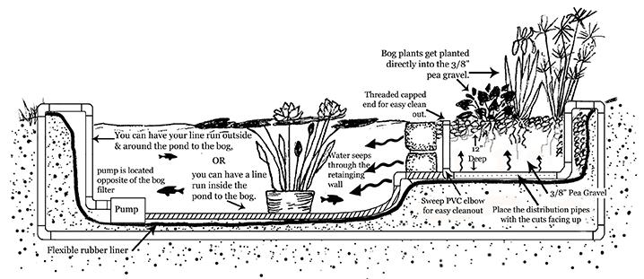 Gravel bog layout elevation water gardening pinterest for Design criteria of pond