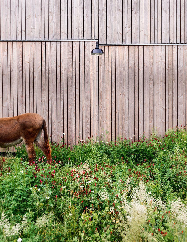 84cc3866b68da4 Kaell Architecte . Haus Vun Der Natur . Kockelscheuer (6 ...
