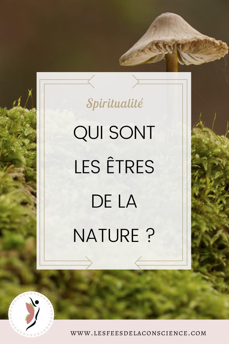 Les Etres De La Nature Ces Magiciens De Lumiere Les Fees De La Conscience Vous Etes Spiritualite Conscience