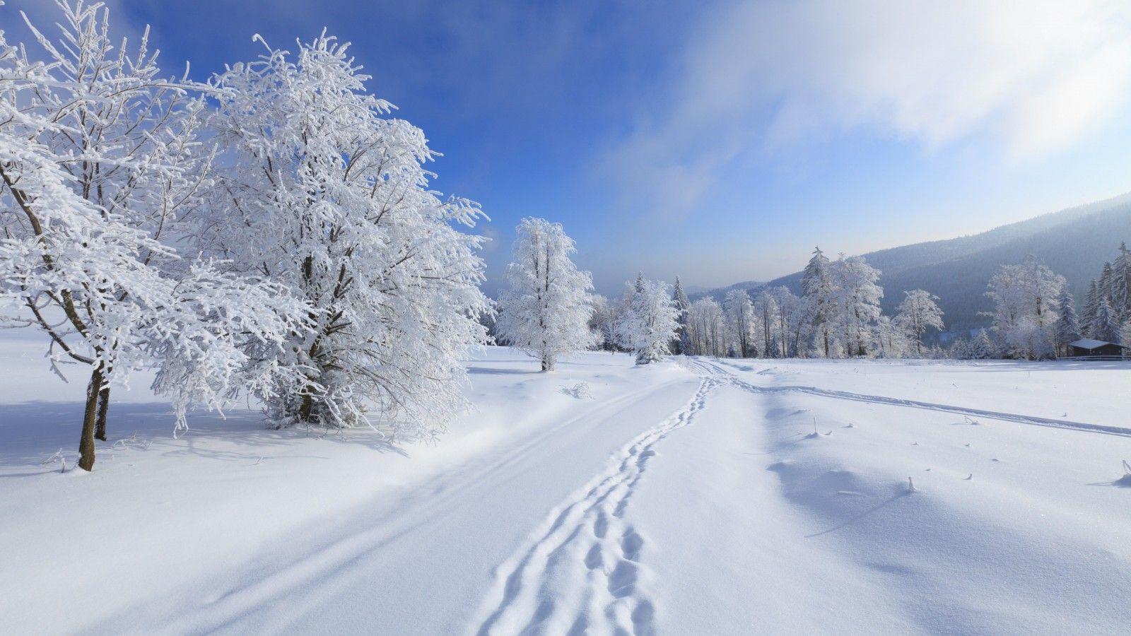 Beautiful Snowfall Season Wallpapers Warm Breath Feelings 1024x1024 Wallpaper Snow 40