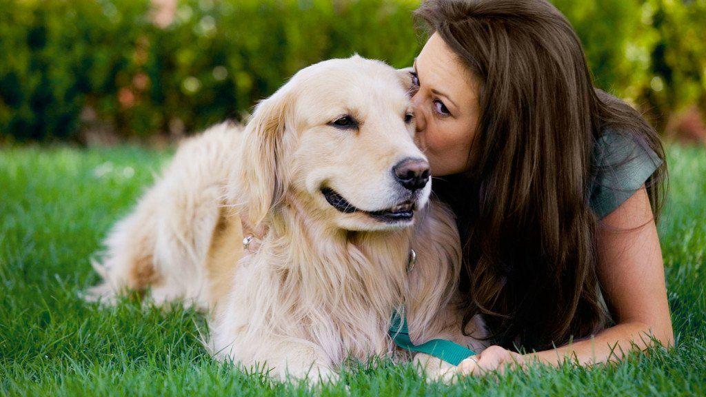 ¿Qué enfermedades pueden contagiarnos las mascotas