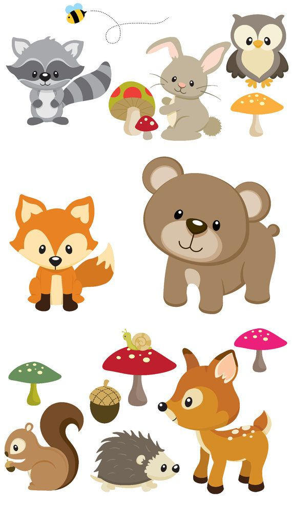 Each Decal Range In Size From 2 To 10 Inches Largest Is The Bear Which Is 10 X 9 Inches Total Of 15 Animales Del Bosque Bebe De Bosque Cumpleanos De Animales