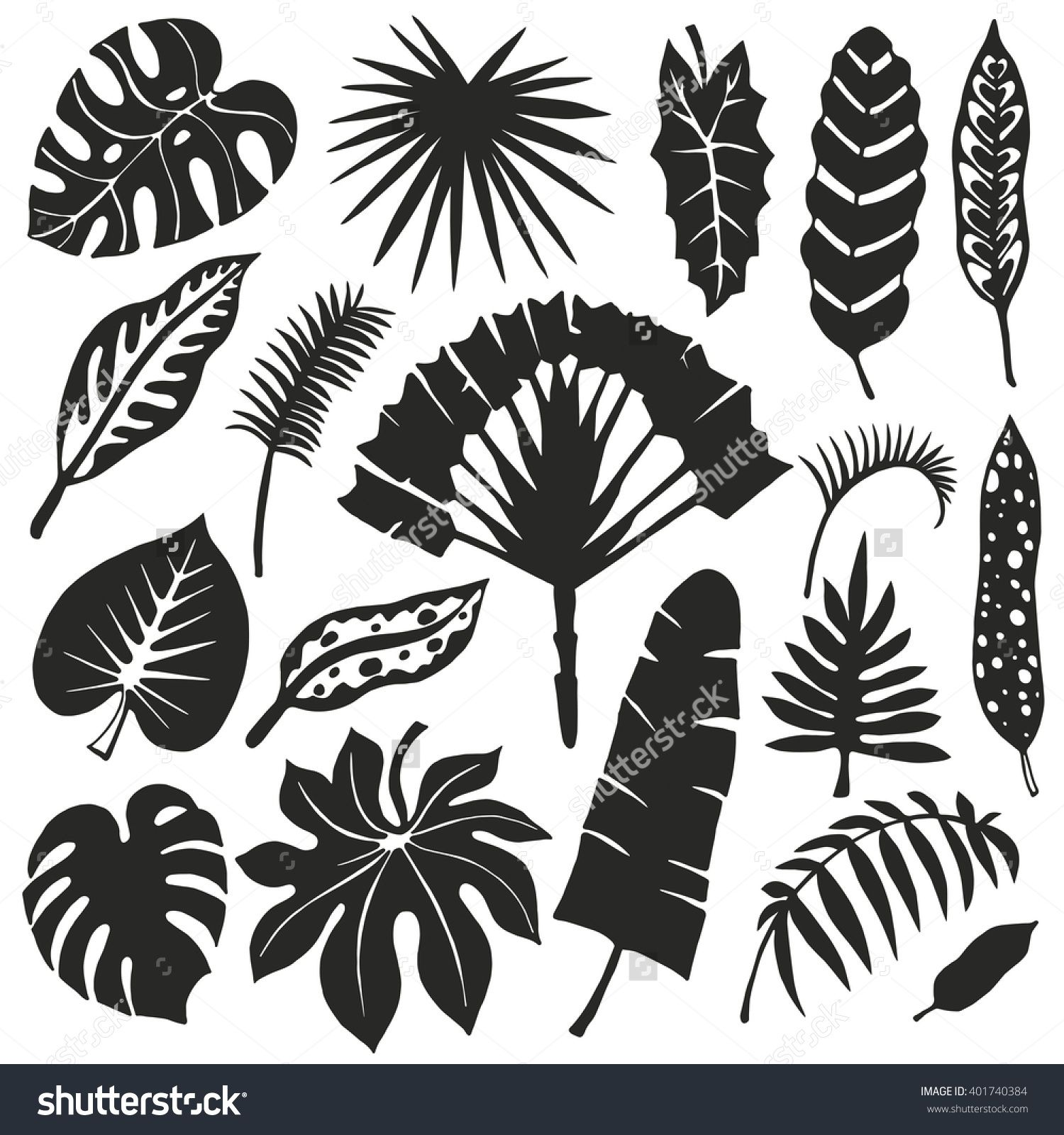 stock-vector-tropical-palm-leaves-set-vector-leaf-silhouette ...