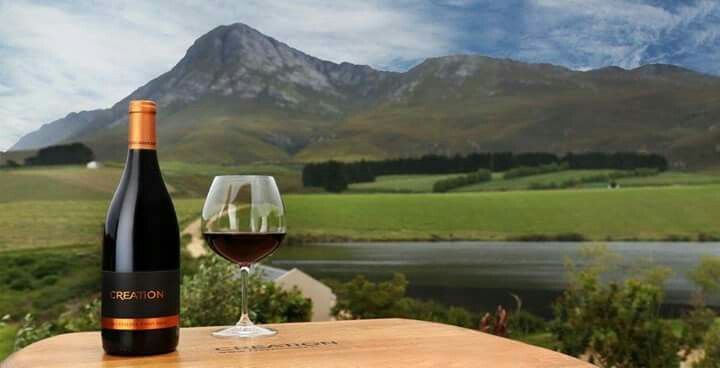 Interesting Wine Estates To Visit In South Africa Creation Wines Strives To Reward The Wine Lover With Wines Of Rar With Images Wine South African Wine Pinot