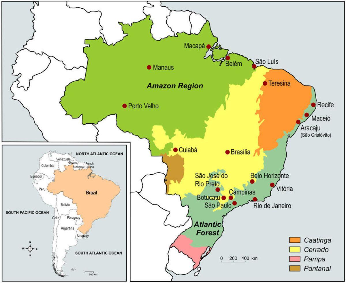 wwwmalariajournalcom  Figure  Brazil  Pinterest  Brazil