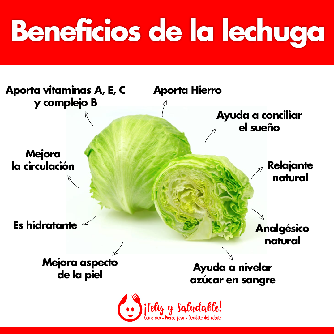 Beneficios De La Lechuga Beneficios De La Lechuga Vida Sana Y Saludable Lechuga