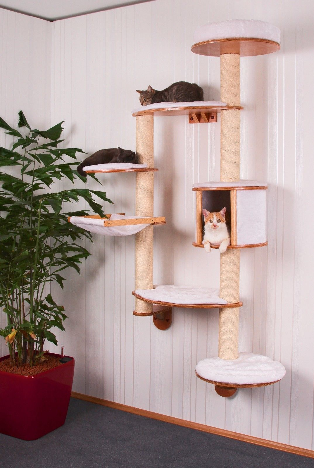 Wall Unit For Cats Cat Tree Cat Room Pet Furniture