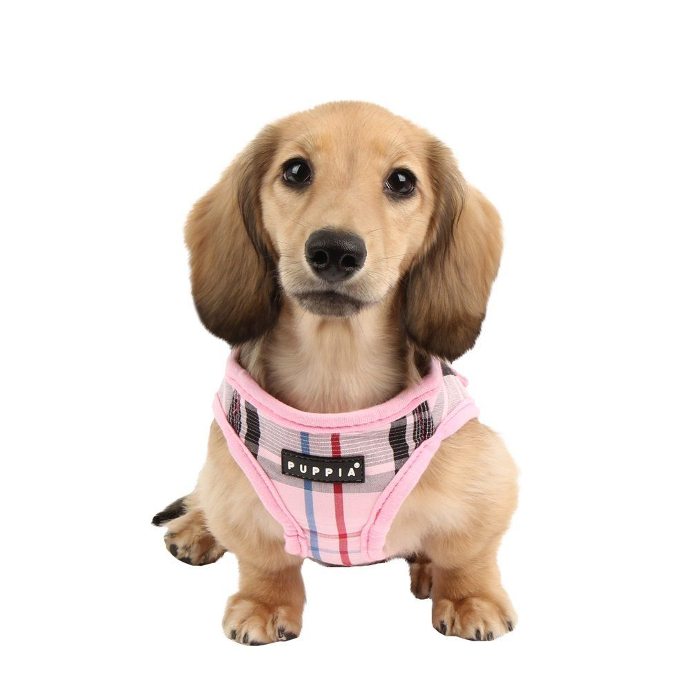 Amazon Com Puppia Authentic Junior Harness B Medium Pink Pet Harnesses Pet Supplies Pet Harness Dog Harness Pets
