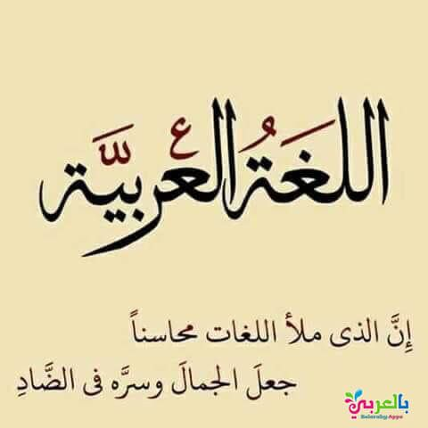 Free World Arabic Day Poster In Arabic Printables For Kids بالعربي نتعلم Alphabet Letters With Words Arabic Alphabet For Kids Learn Arabic Alphabet