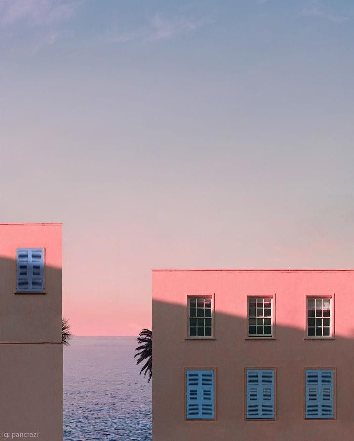 Pink Window Palm Minimalist Photography Pictures Photo