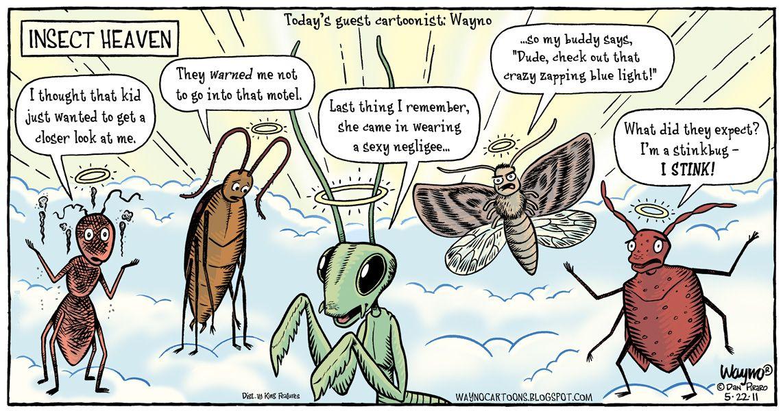 Butterflies Gaffer Tape Cartoon | Gaffer tape, Funny jokes and Cartoon
