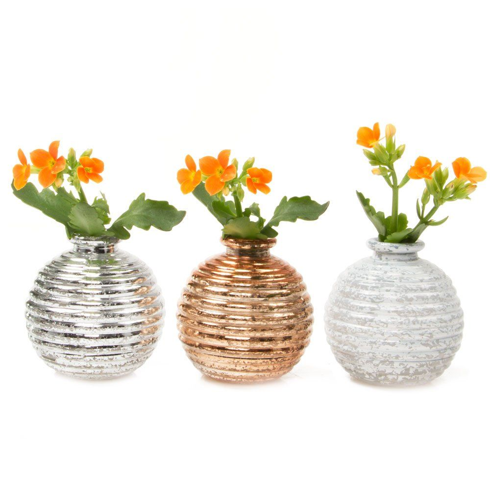 Chive Small Decorative Round Circular Glass Flower Vase Wholesale Bulk 6 Piece Set In Gold Metallic Silver And Wh Glass Flower Vases Floral Vase Bud Vases