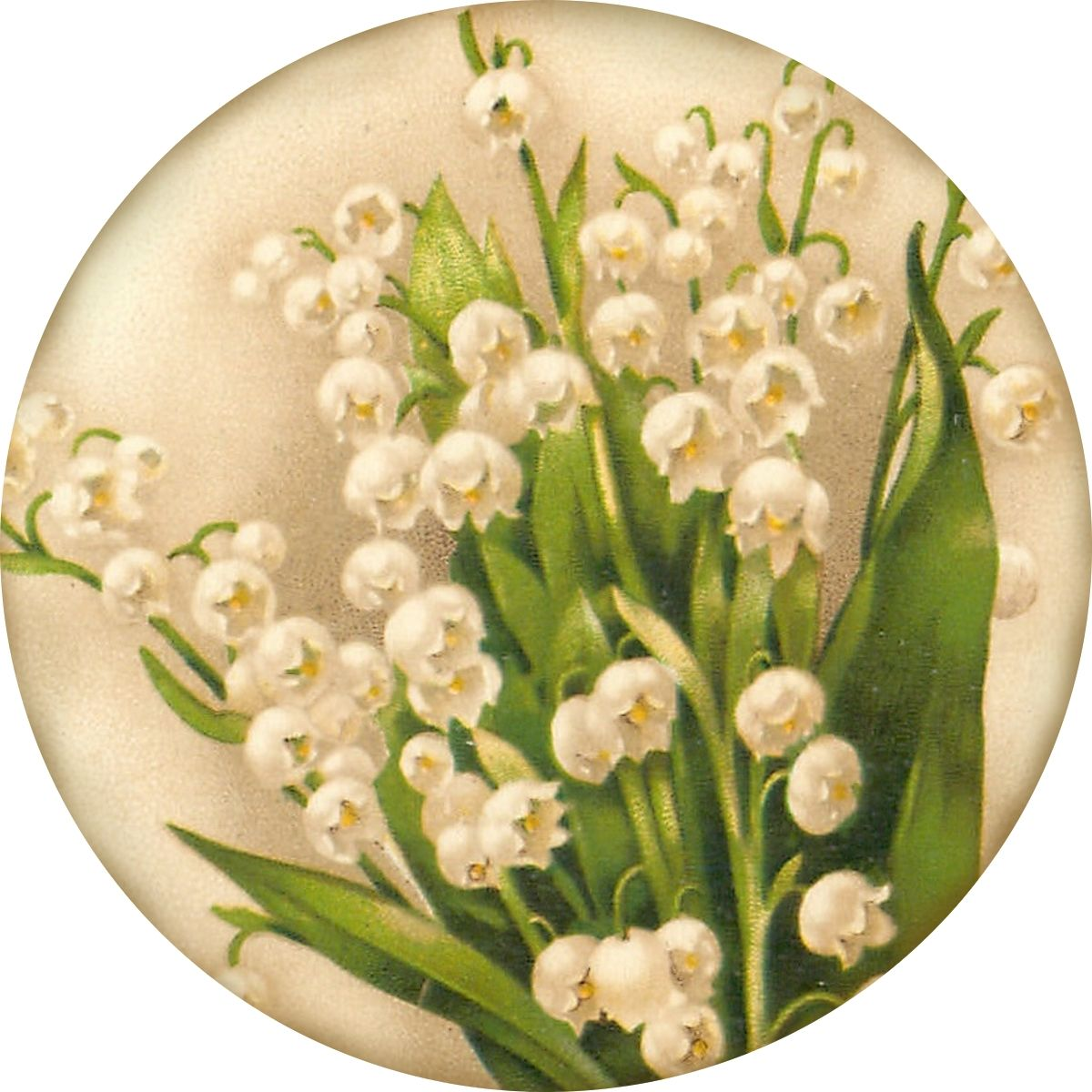 """Sweetest of the Flowers"" ~ 4"" round lily of the valley graphic from antique postcard."