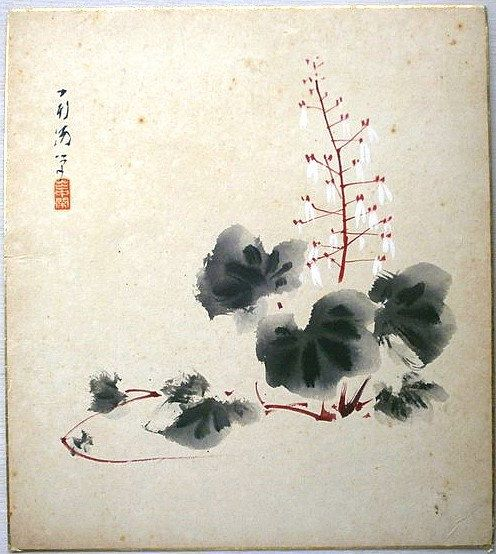 Vintage Japanese Painting Saxifrage In Showa Period Via