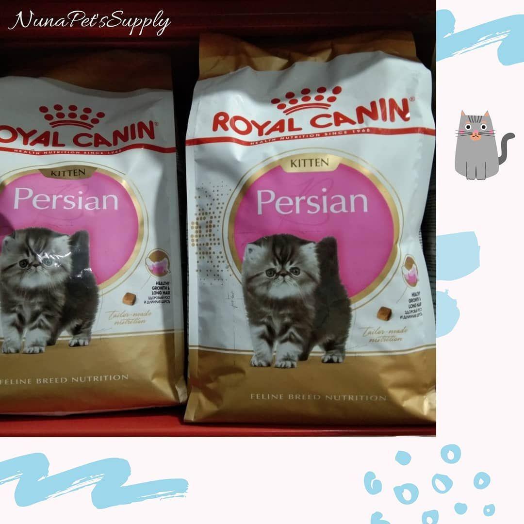 Makanan Kucing Royal Canin For Persian Kitten Makanan Untuk Kucing Ras Persian Kesayangan Anda Yang Dapat Membantu Menjaga Kesehatan Badan Dan Bulunya