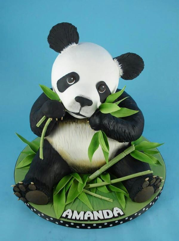 panda cake provestra traumtorten viel zu sch n zum essen pinterest panda kuchen. Black Bedroom Furniture Sets. Home Design Ideas