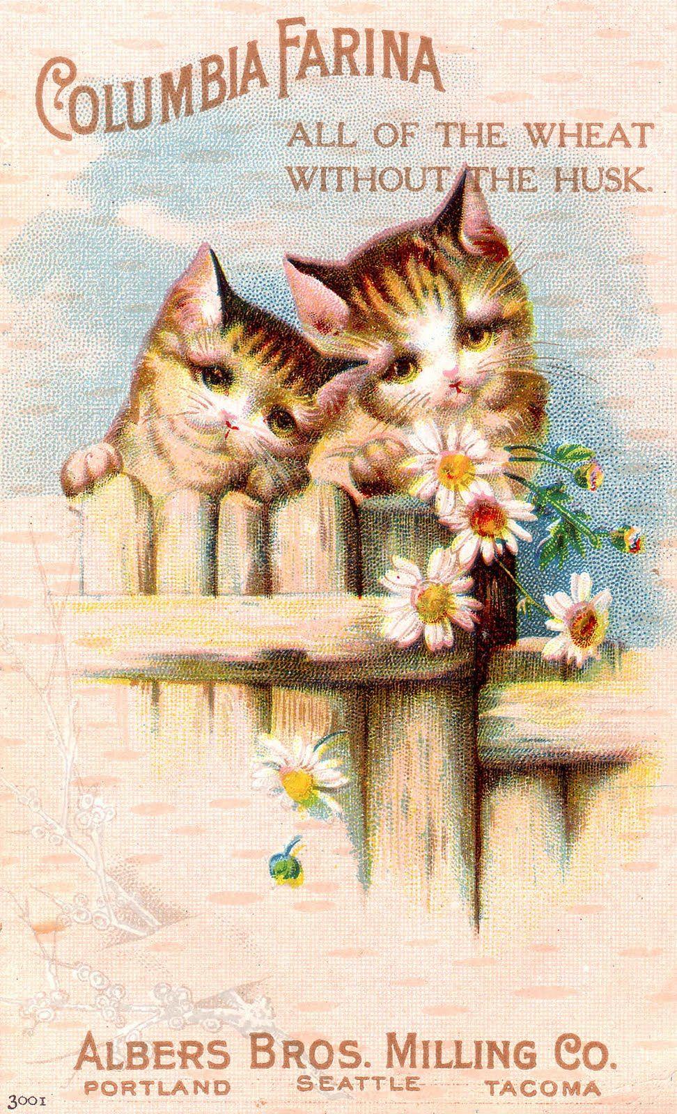 Laminas Vintage Antiguas Retro Y Por El Estilo Vintage Artwork Vintage Advertisements Cats