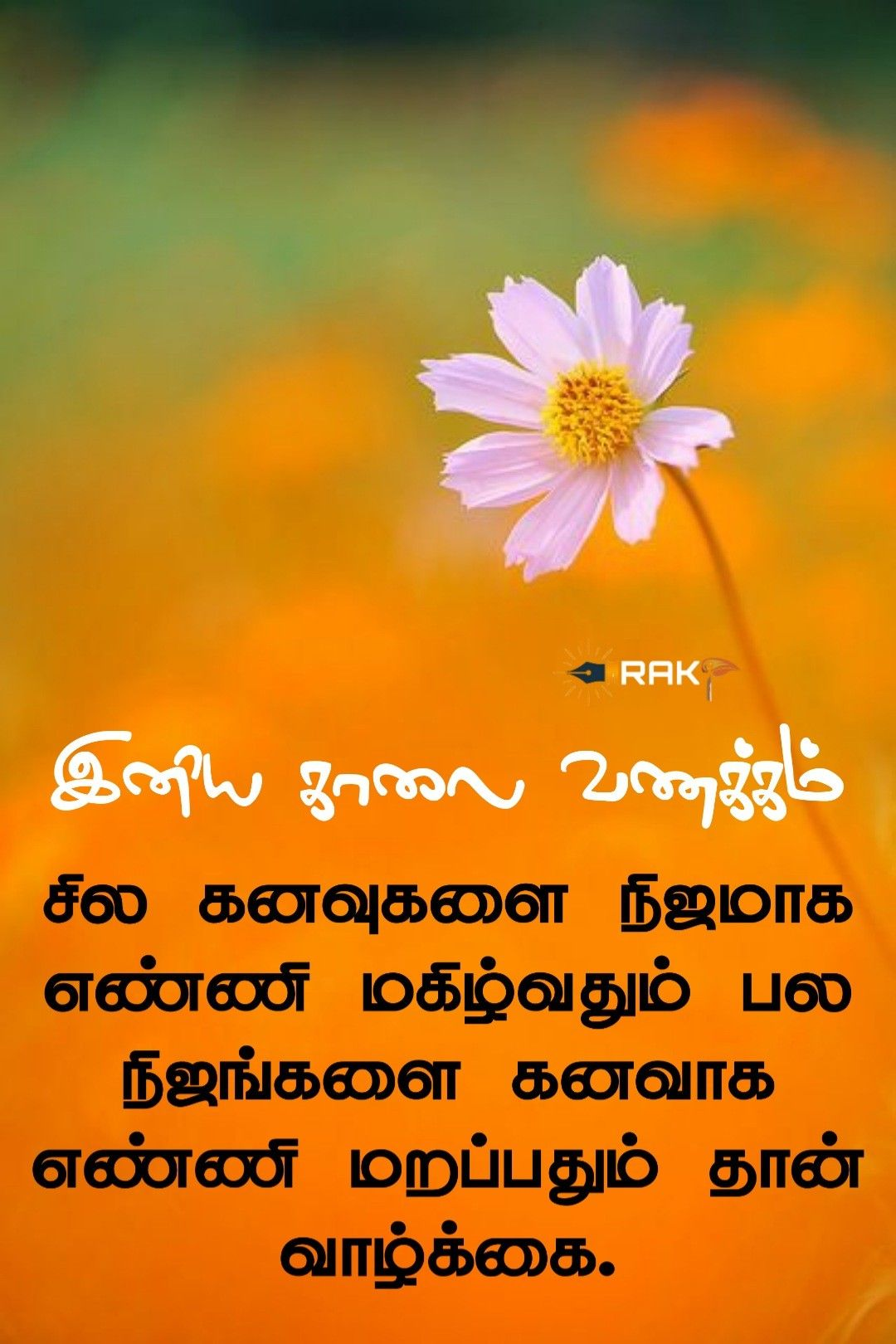 Tamil Morning Thought Good Morning Beautiful Pictures Best Quotes Images Good Morning Quotes