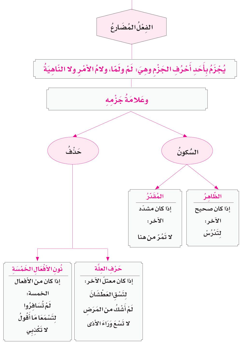 الدرس الثامن جزم الفعل المضارع Learning Arabic Learn Arabic Language Arabic Langauge