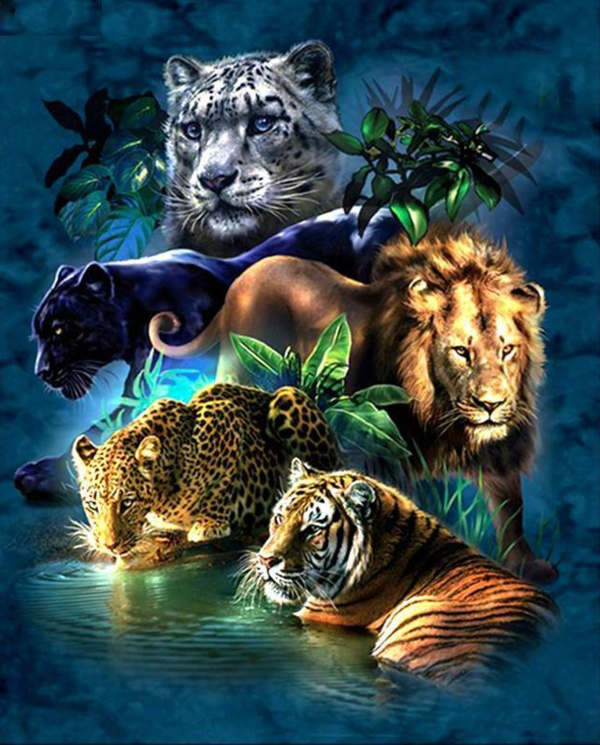 Картинки с животными на телефон самсунг