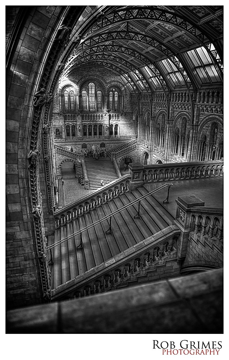 Natural History Museum London In Hdr Hdr Photography