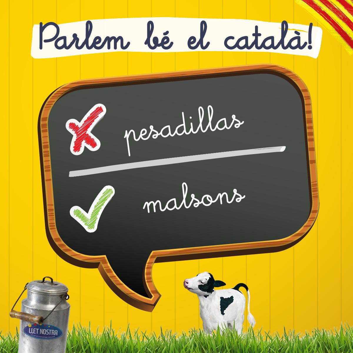 #femcollaambelcatalà #català