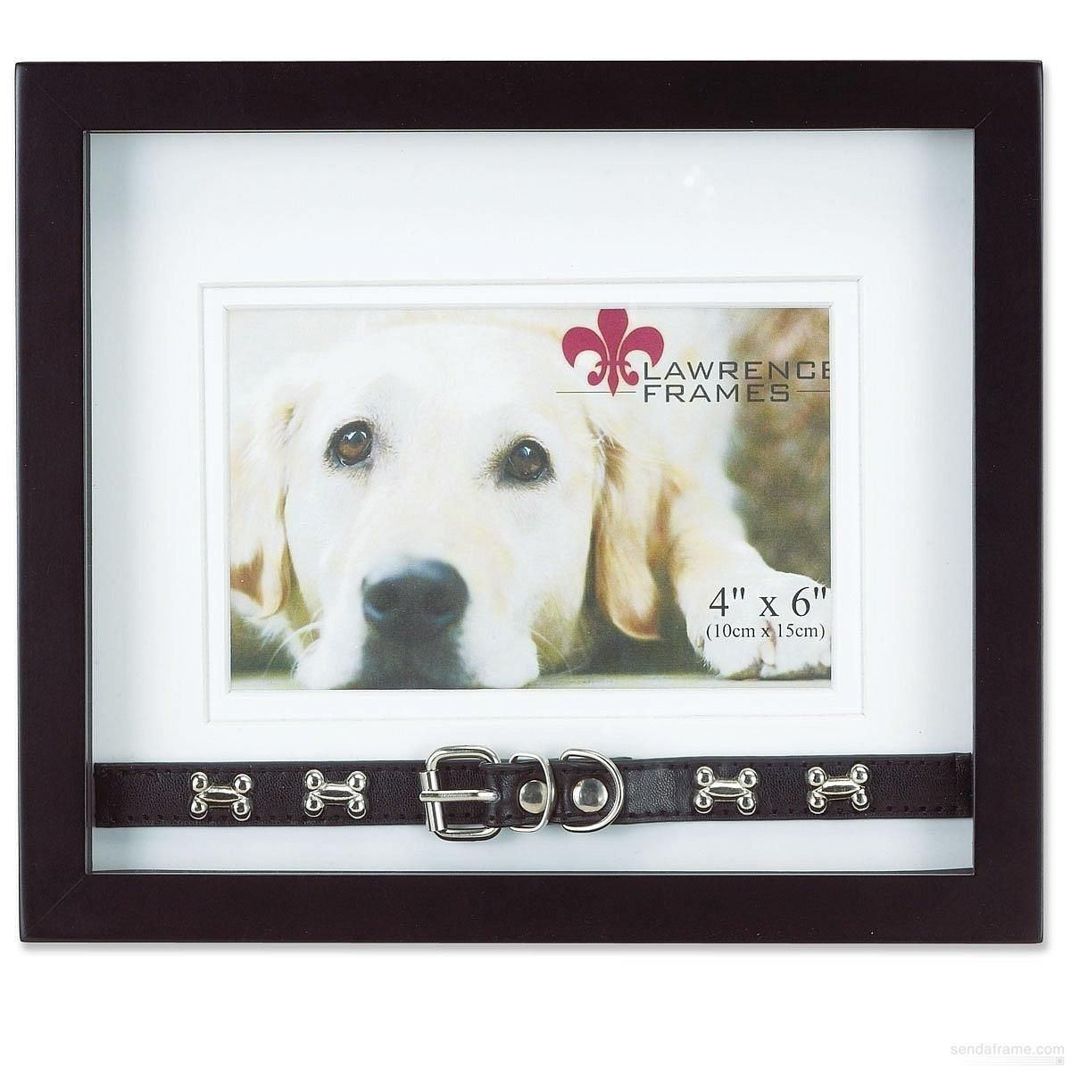 DOG COLLAR Black Shadow-box frame by Lawrence® - Picture Frames ...