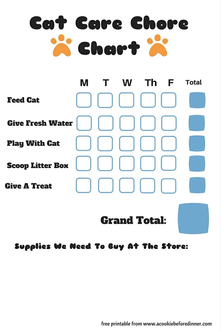 Teaching Kids How To Care For Cats Printable Cat Care Chore Chart A Cookie Before Dinner Chore Chart Cat Care Pet Care Chart