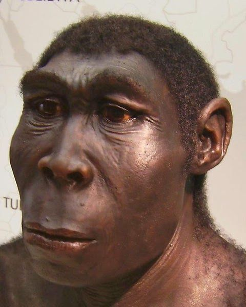 compare life early man modern man